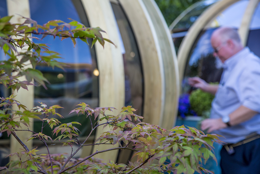 RHS Hampton Court Flower Show 2015